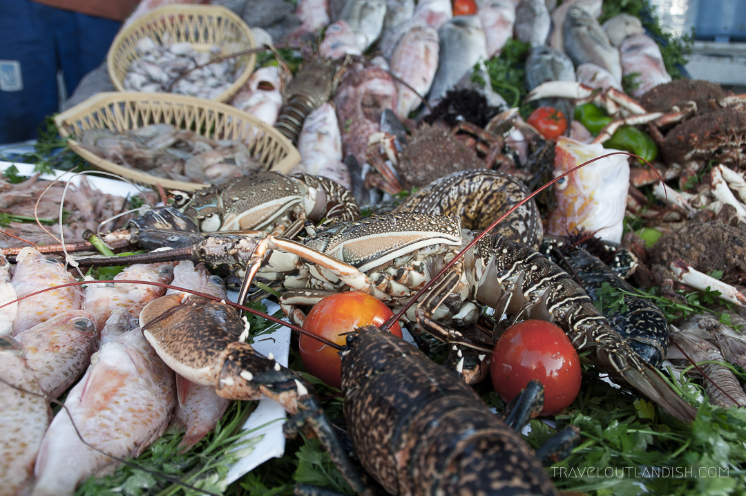 Essaouira Fish Market - Fish