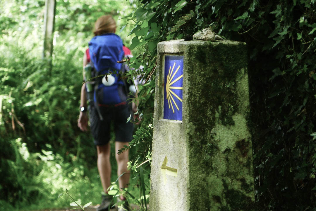 The Camino de Santiago - The Camino Primitivo