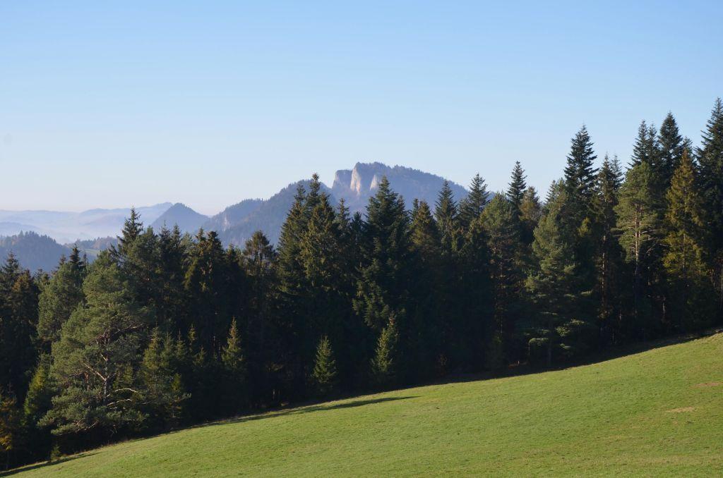 Wysoki Wierch