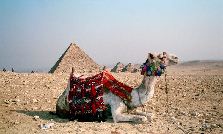 Cairo, Egypt © Len Rapoport
