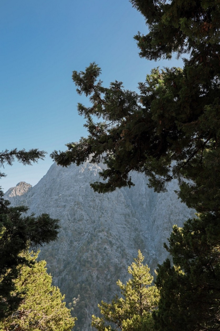 Best places to visit in Greece Number 6 - Samaria Gorge