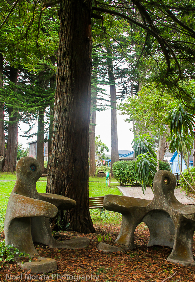 A quirky and fun garden in Mendocino