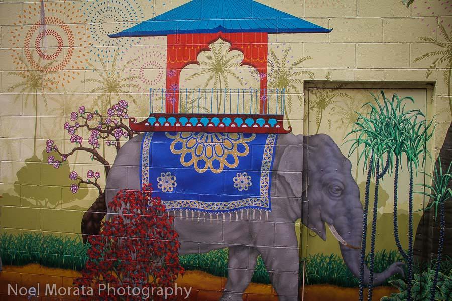 Who wants a ride on an elephant?