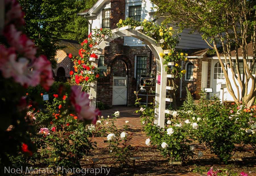 Luther Burbank Gardens, Travel Photo Mondays