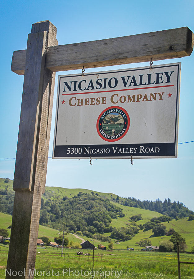 You have arrived Nicasio Valley cheese