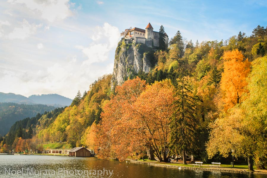 A broad view of the castle and Lake Bled autumn colors