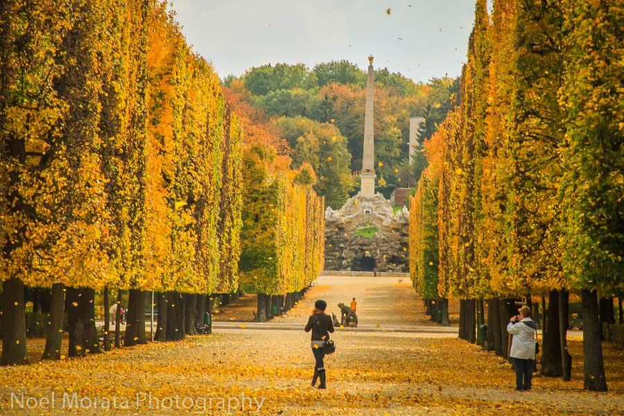 The grand allees at Schonbrunn gardens