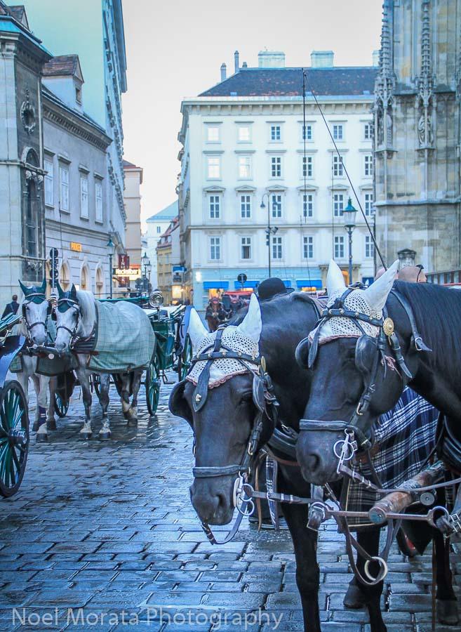 A horse drawn carriage ride through historic Vienna