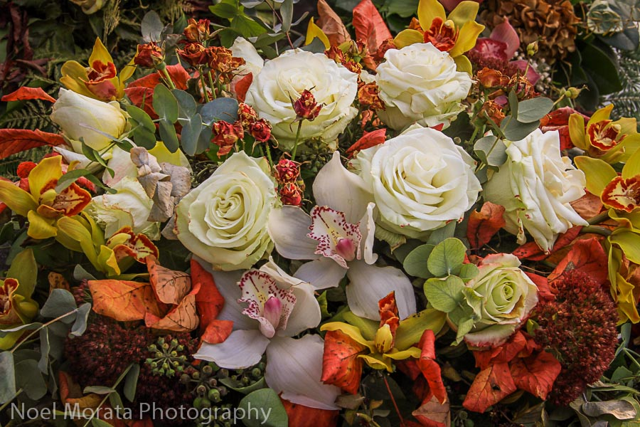 Gorgeous floral displays at Mirogij