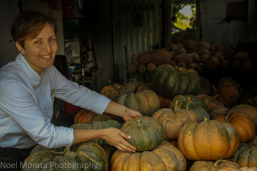 The pumpkin harvest at Podere San Giuliano