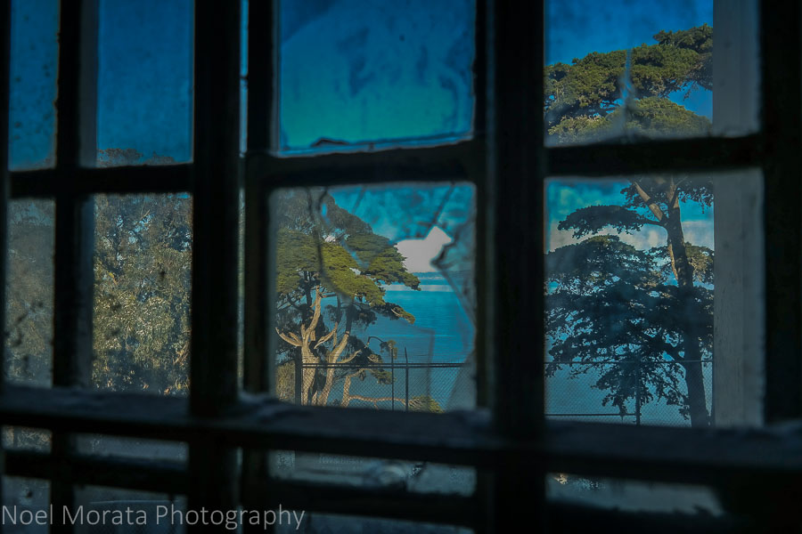 Broken window views and trees and Alcatraz