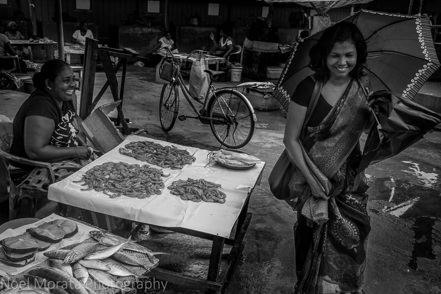 The fish market at Negombo, Sri Lanka