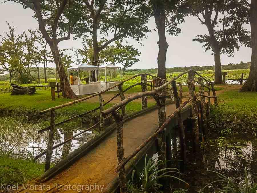 Crossing a small bridge for an island breakfast at Cinnamon Lodge in Habanara