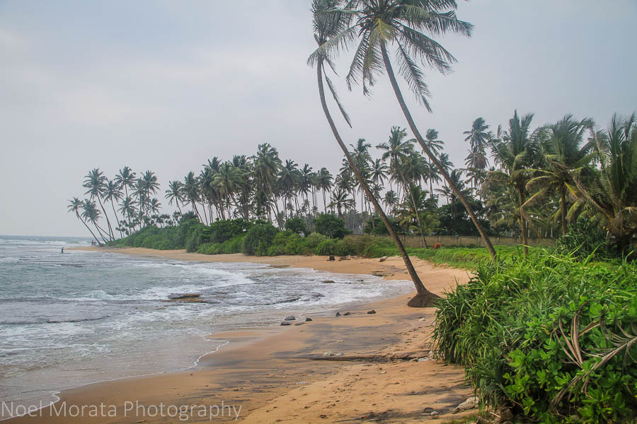 Beach at Jetwing LIghthouse in Galle