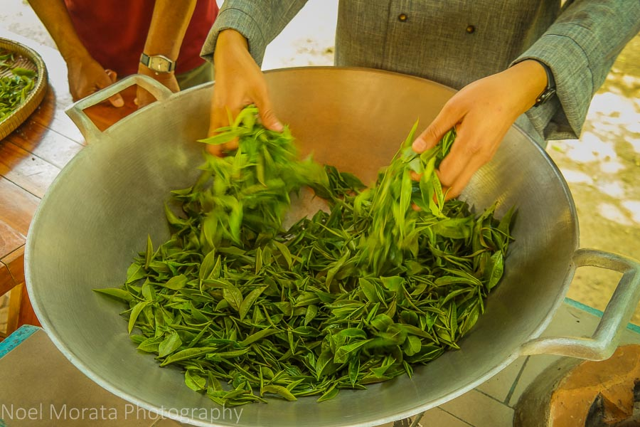 Dry roasting tea leaves and manually turning from a hot wok