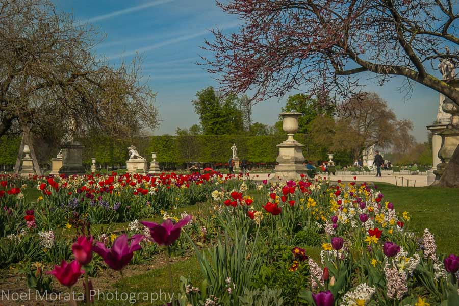 Visiting Paris: 10 tips and suggestions - Enjoying the Tuileries in Paris