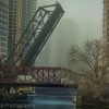 Bridges of Chicago - Chicago river cruise