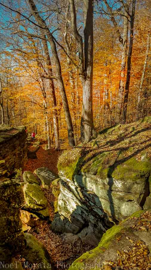 Fall season at Whipps Ledges in Hinckley Reservation, Ohio
