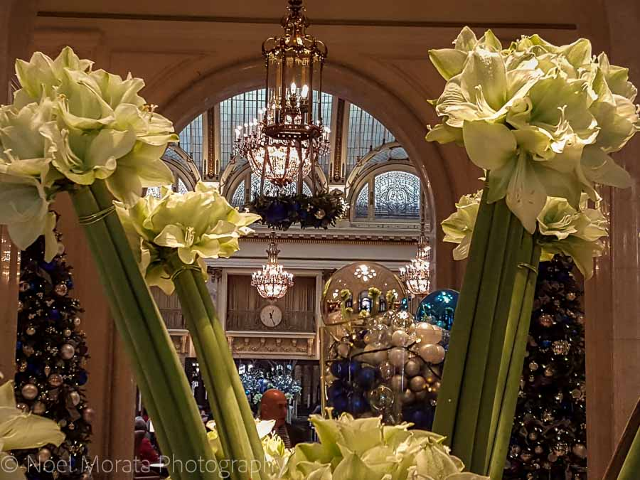 The Palace hotel decorations - Christmas in San Francisco