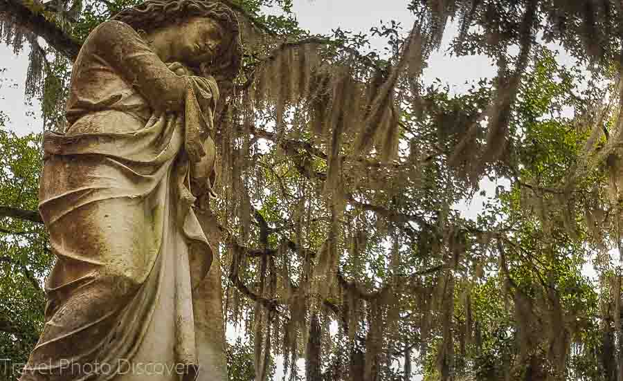 Entry gate state at Bonaventure Cemetery Savannah