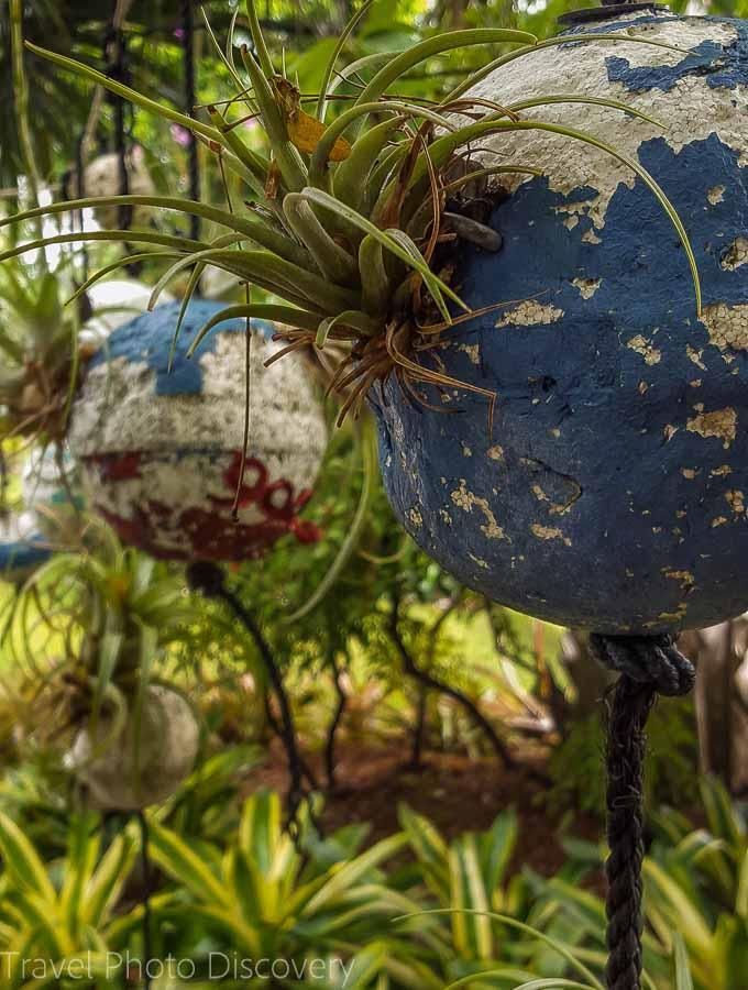 Garden art walk Miami Beach Botanical Garden