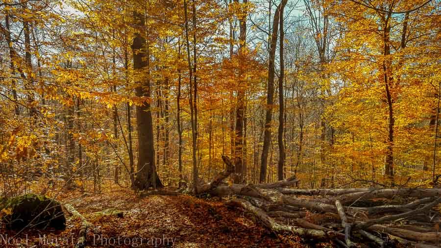 Cuyahoga National Park Celebrating the US National Parks Centennial