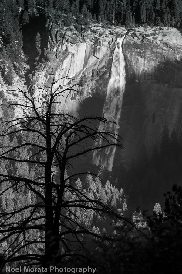 Nevada Falls Celebrating the US National Parks Centennial