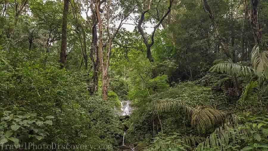 Passing a national park towards Colon Zip line adventure tour Panama City, Panama