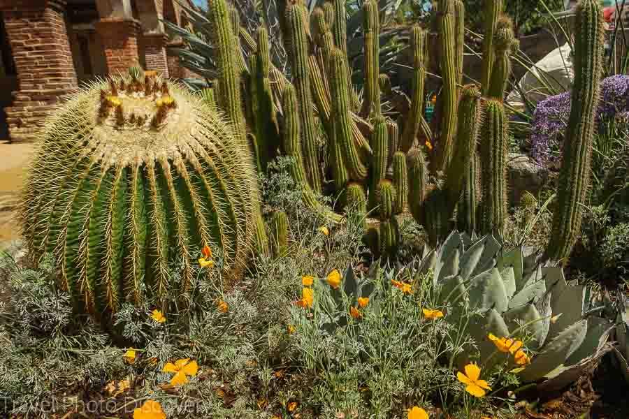 Flower gardens at San Juan Capistrano Mission