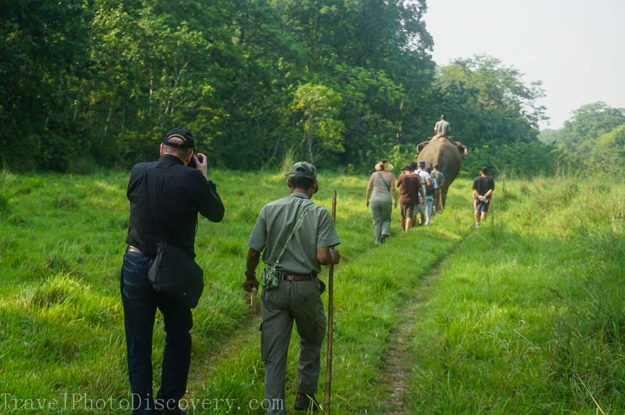 Morning jungle trek at Chitwan National Park