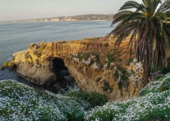 things to do in La Jolla, San Diego