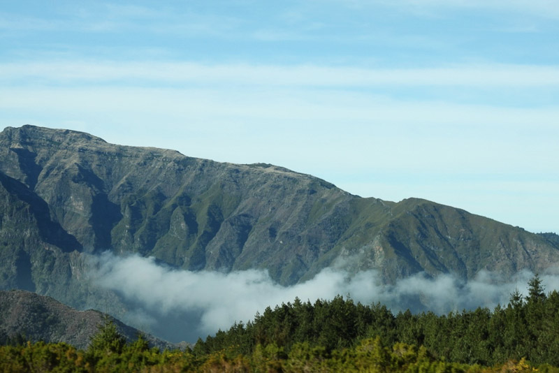 Pico de Arierio what to see and do in Madeira