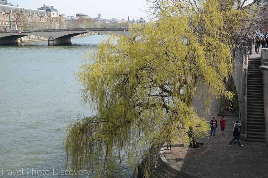 The banks of the Seine river in Paris