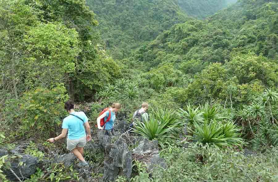 cat-ba-national-park