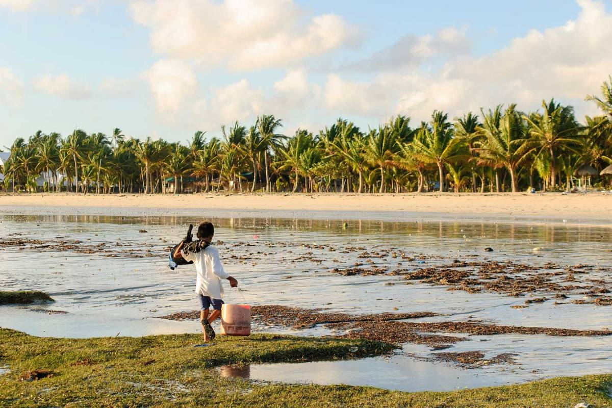 A kid carrying a bucket of mollusks, Alice Beach, Bantayan Island