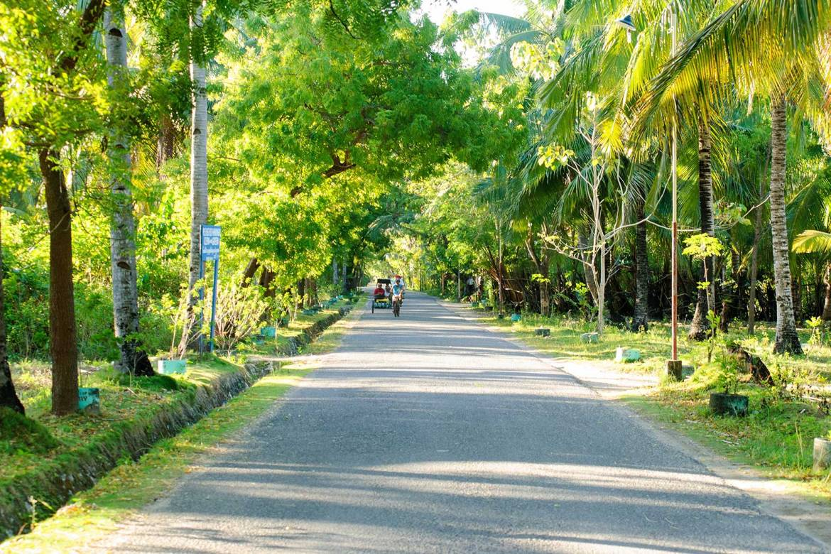 Tree lined back roads, Bantayan Island