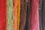 Silk Worm Factory