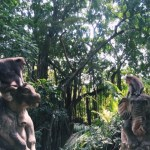 Monkey forests: Sangeh and Ubud