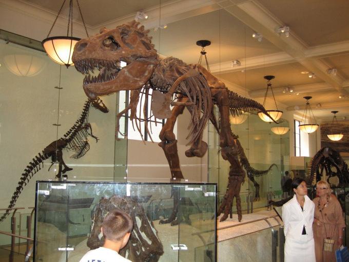 washigton-natural-history-museum