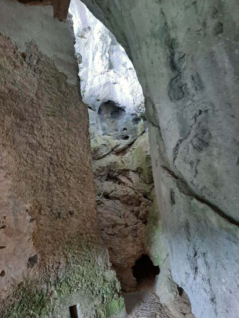 Ljubliana Day Trip: Bled, Predjama e Postojma