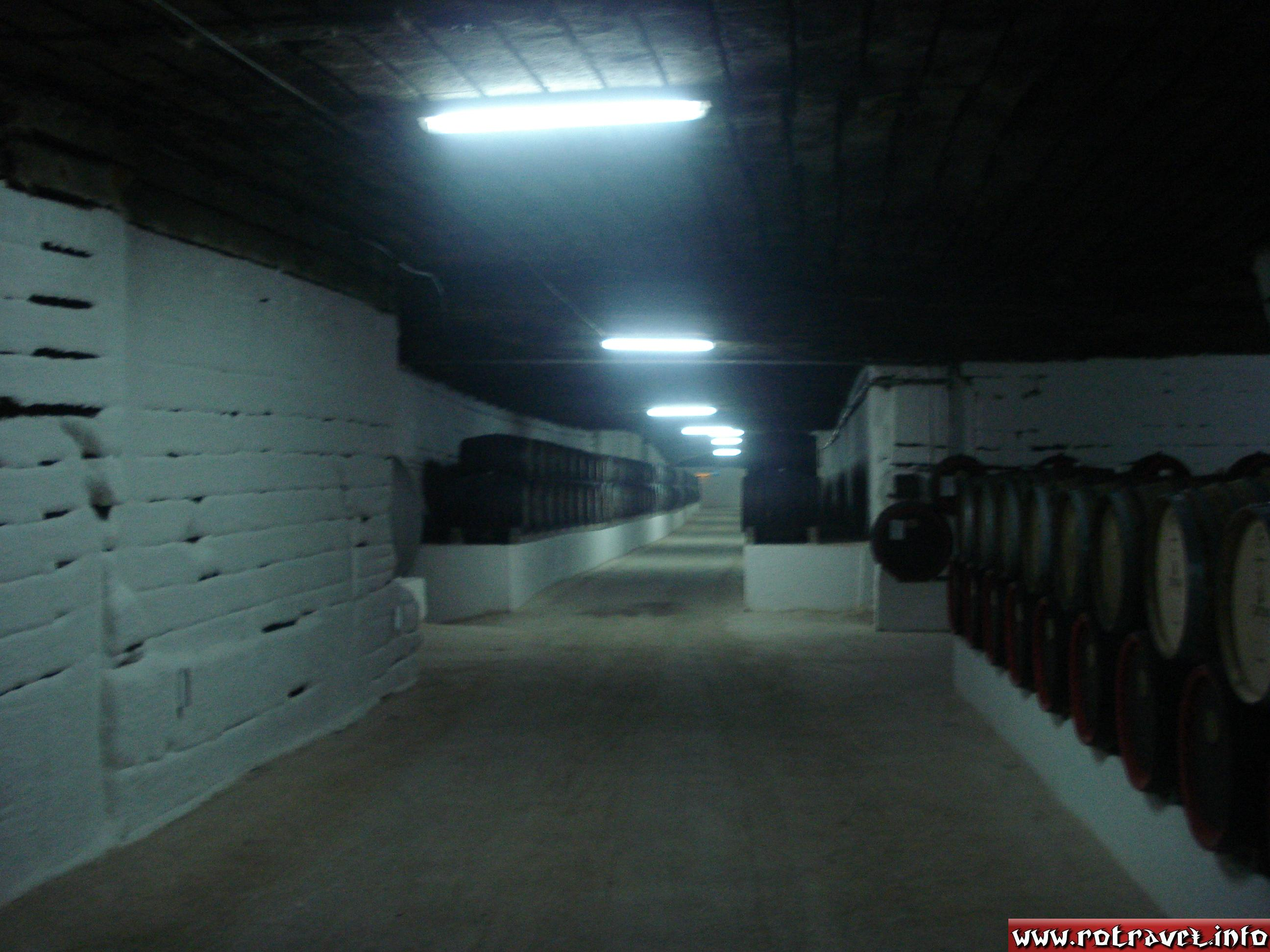 A cellar located on Cabernet Street, where is kept the Pinot wine.