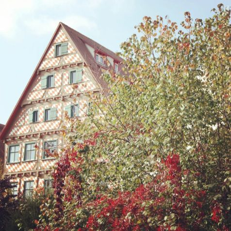 Instagram - Ulm