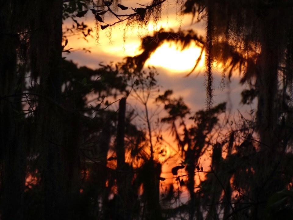 sonnenuntergang bayou nola