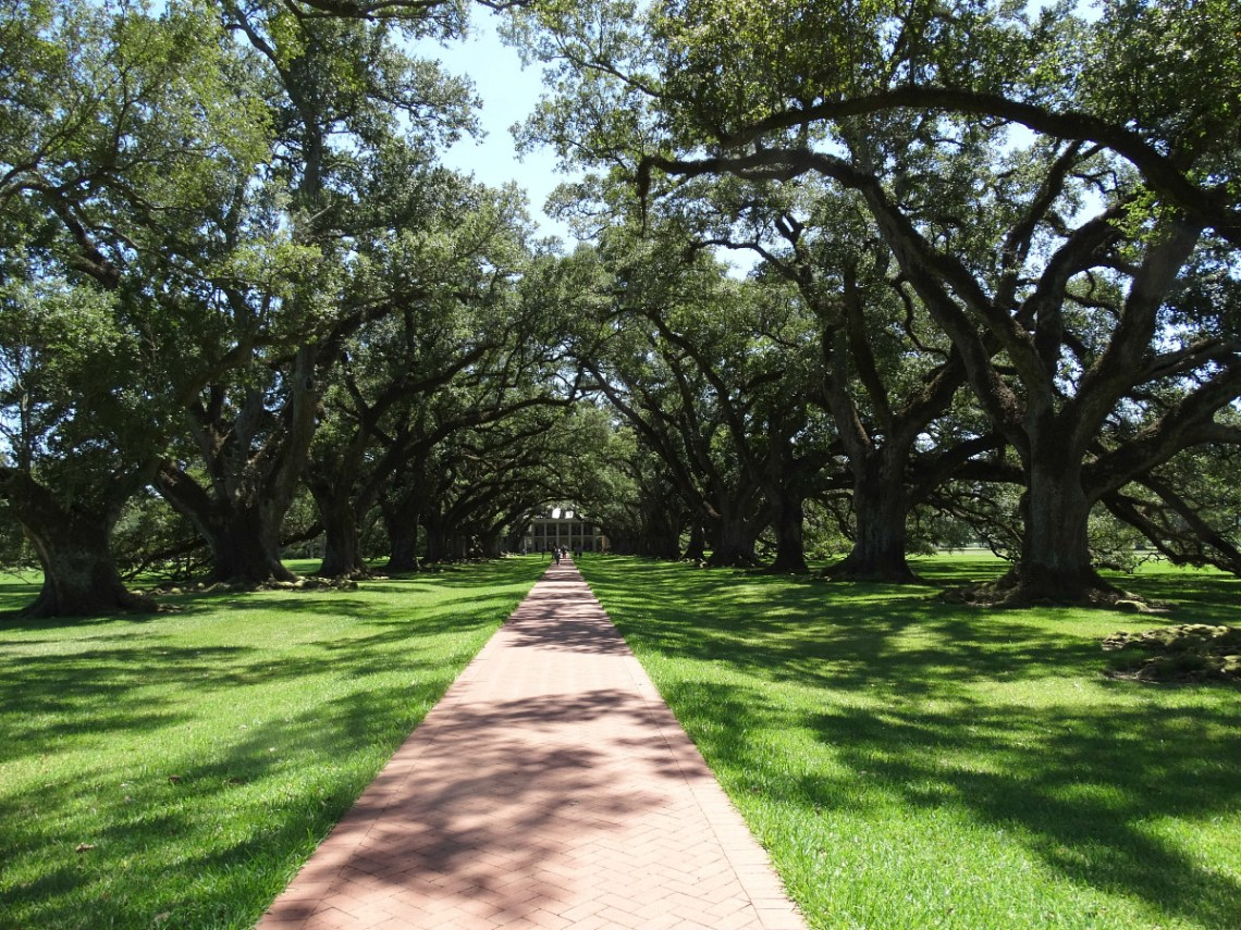 oak-alley-plantation-vacherie-louisiana