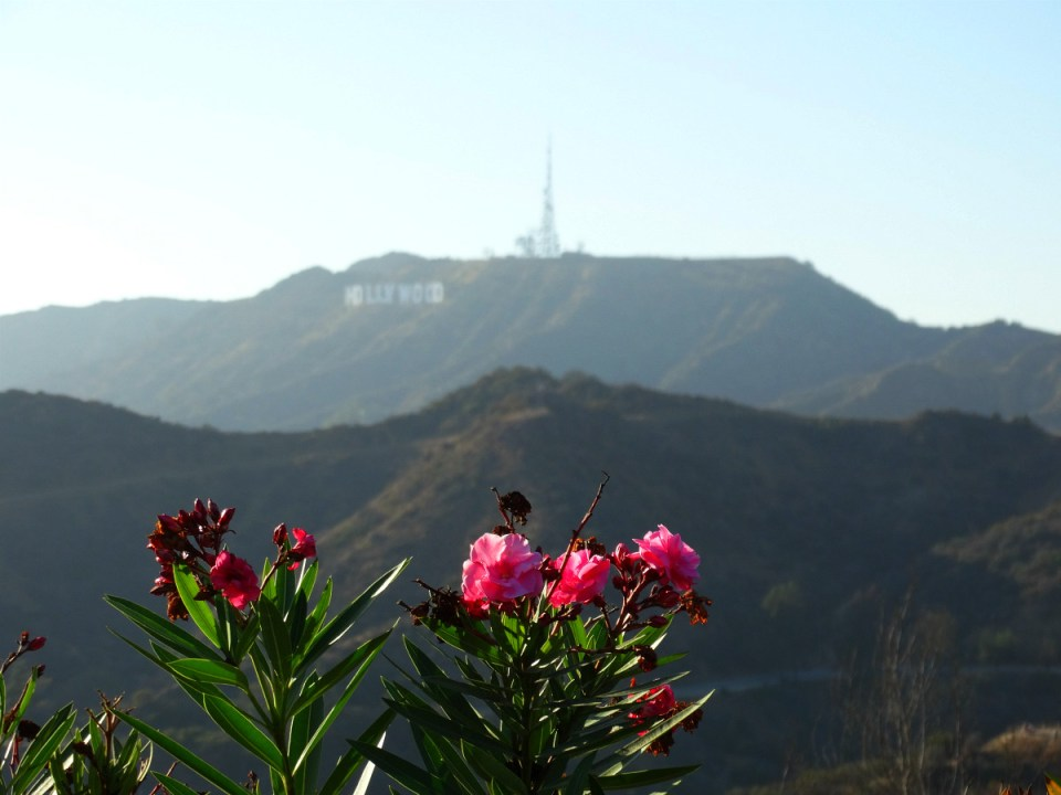 Griffith Observatory mit Blick auf das Hollywood Sign in Los Angeles