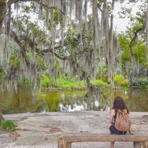 Unter Eichen im New Orleans City Park