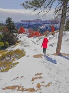 bryce canyon wetter im februar. wandern im schnee