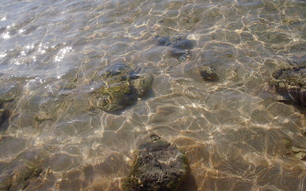 nai_yang_beach.2