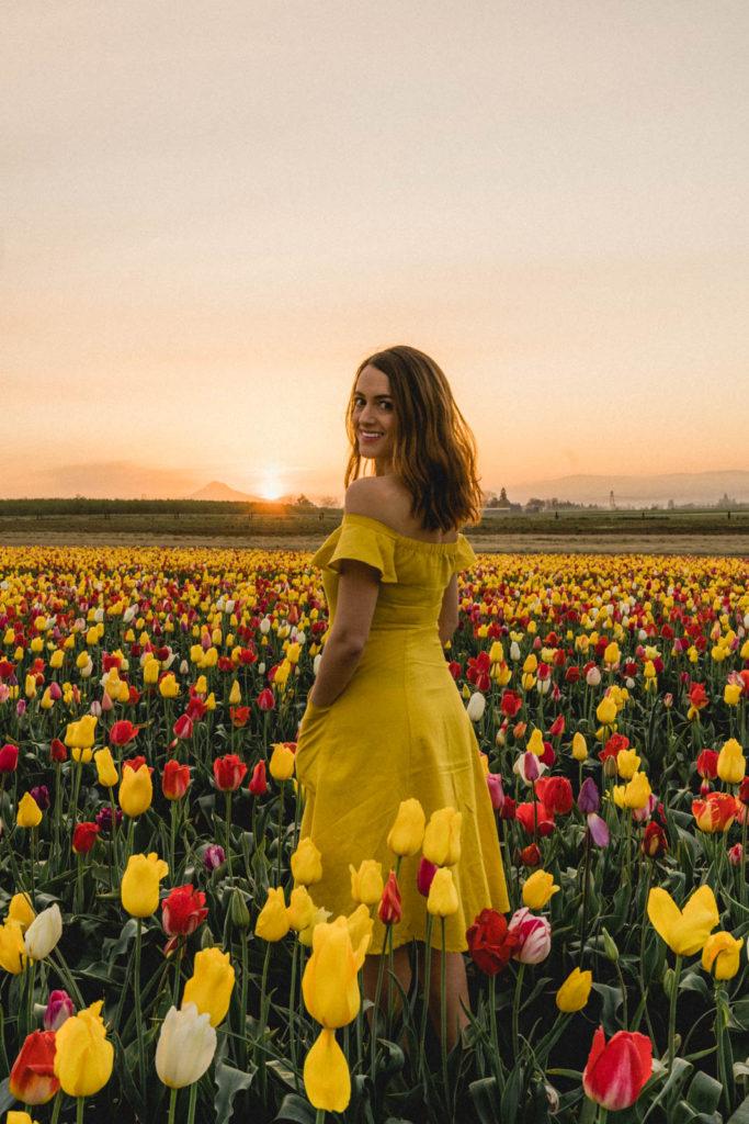 Tulip Festival California