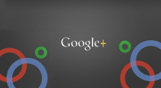 Google Plus ID or URL